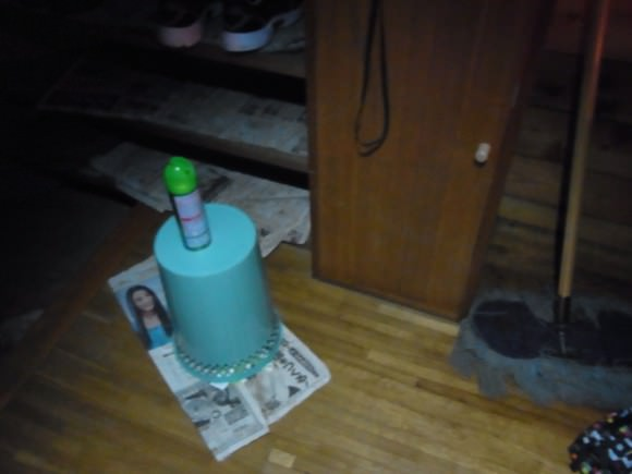 RIMG0094 580x435 - 第76回野尻学荘の思い出 カブトムシ