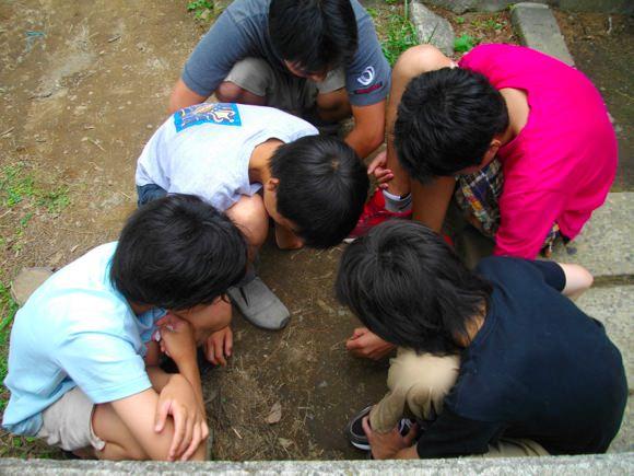 IMGP2414 第76回野尻学荘の写真 7