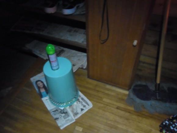第76回野尻学荘の思い出 カブトムシ