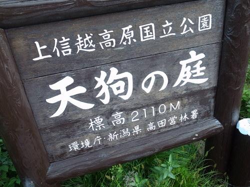 1417266cbcd8404440d73a8083eae2434 第78野尻学荘アウティング 火打山から下山