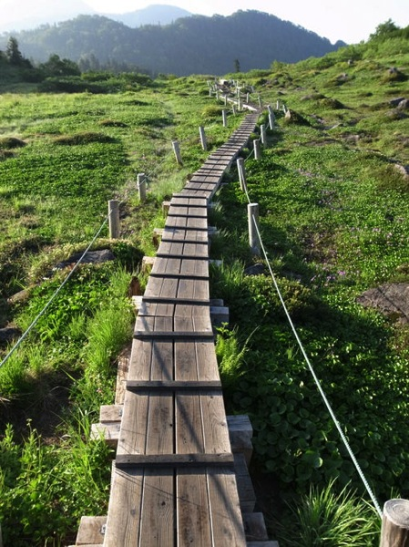 f9b89448bb4c06a348e75a9eeb8327f02 - 第78野尻学荘アウティング 火打山から下山